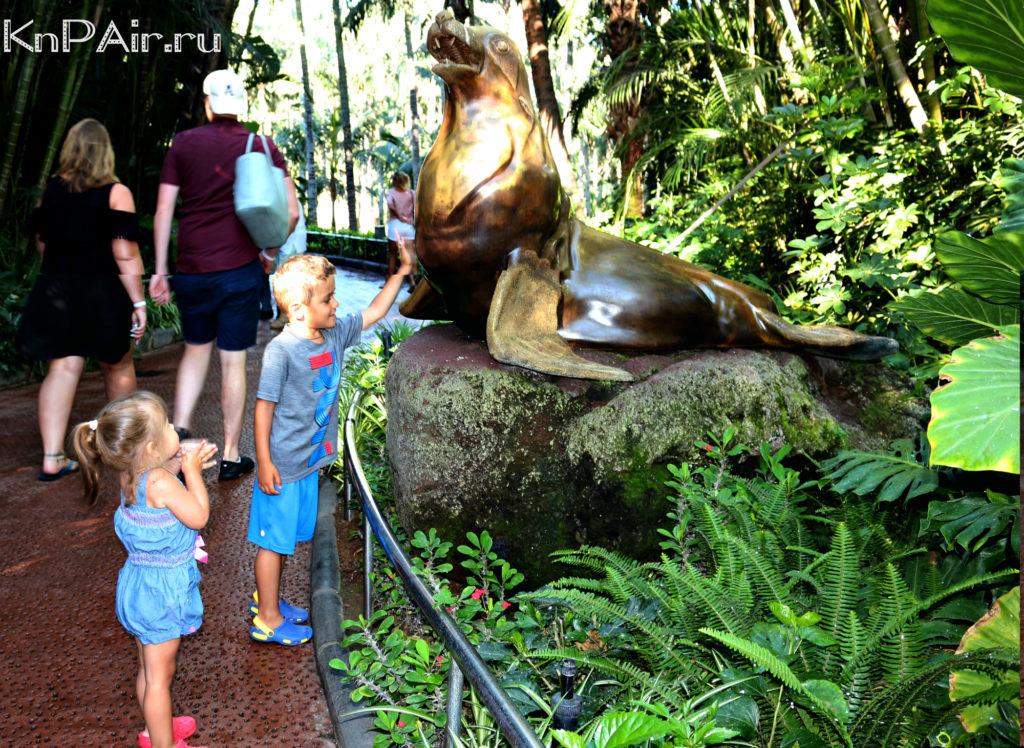 шоу морских львов в лоропарке