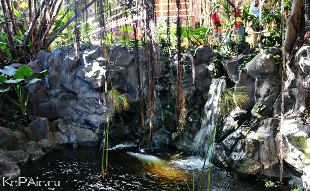 водопады в лоропарке