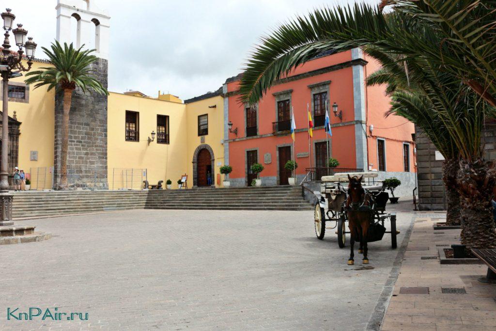 Pokatatsya-na-loshadi-na-Tenerife