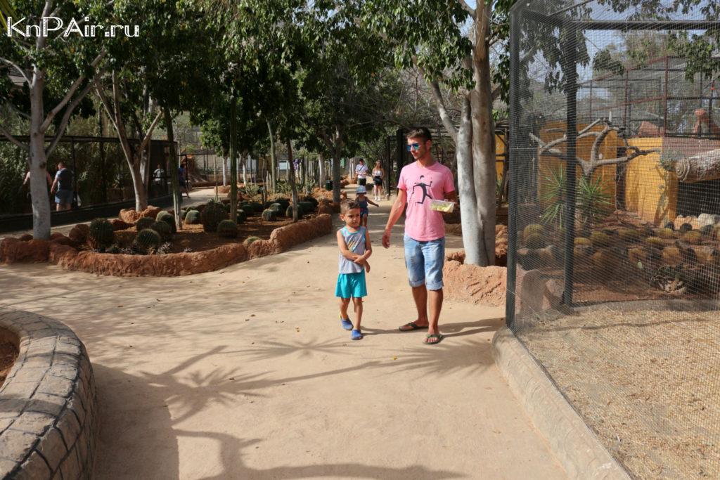 tenerife-lemury-zoopark
