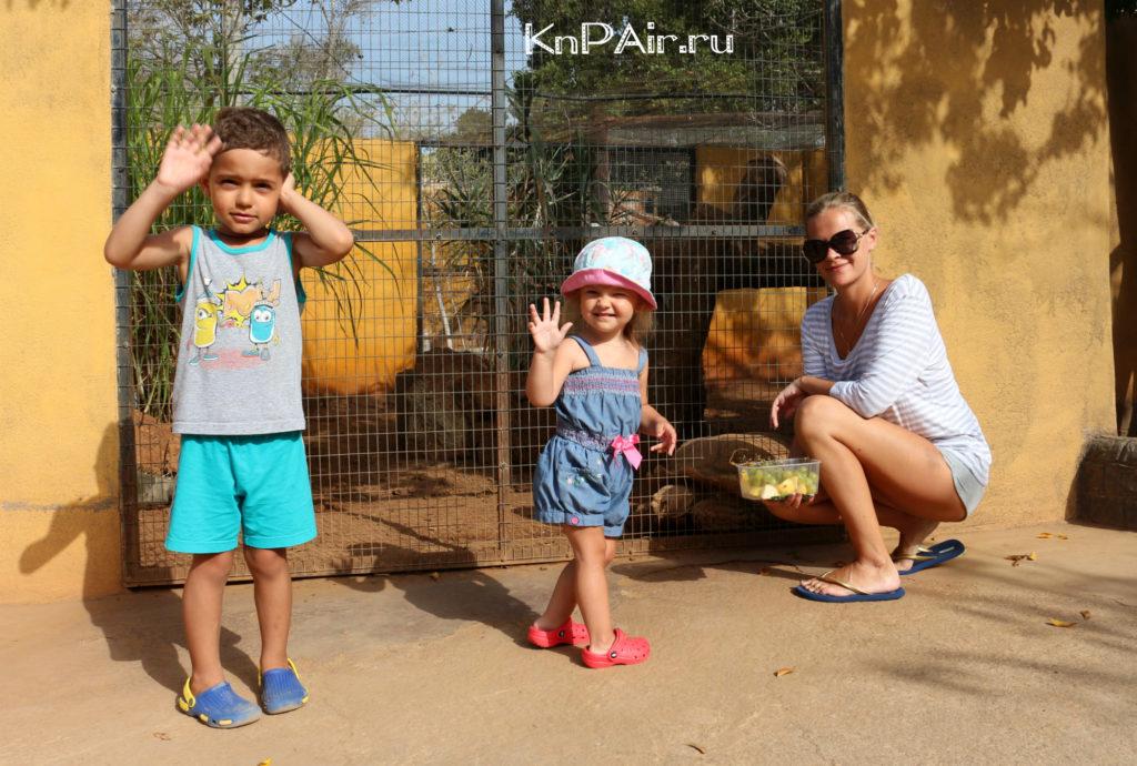 s-detmi-tenerife-kontaktnyi-zoopark