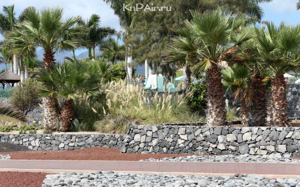 Alcala-naberezhnaya-Tenerife