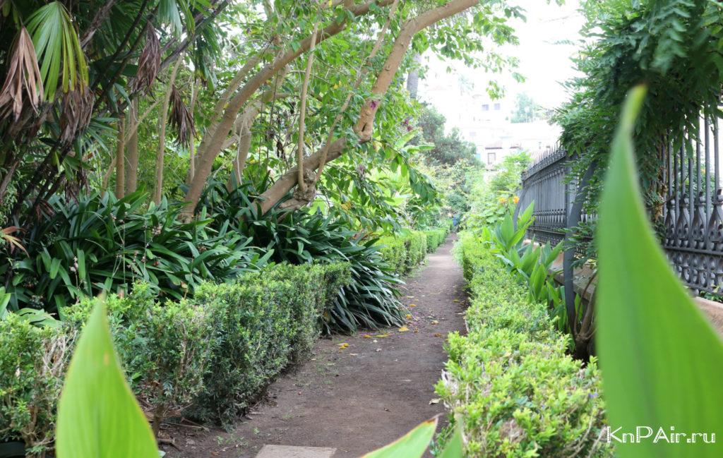Botanicheskij sad v La Orotave