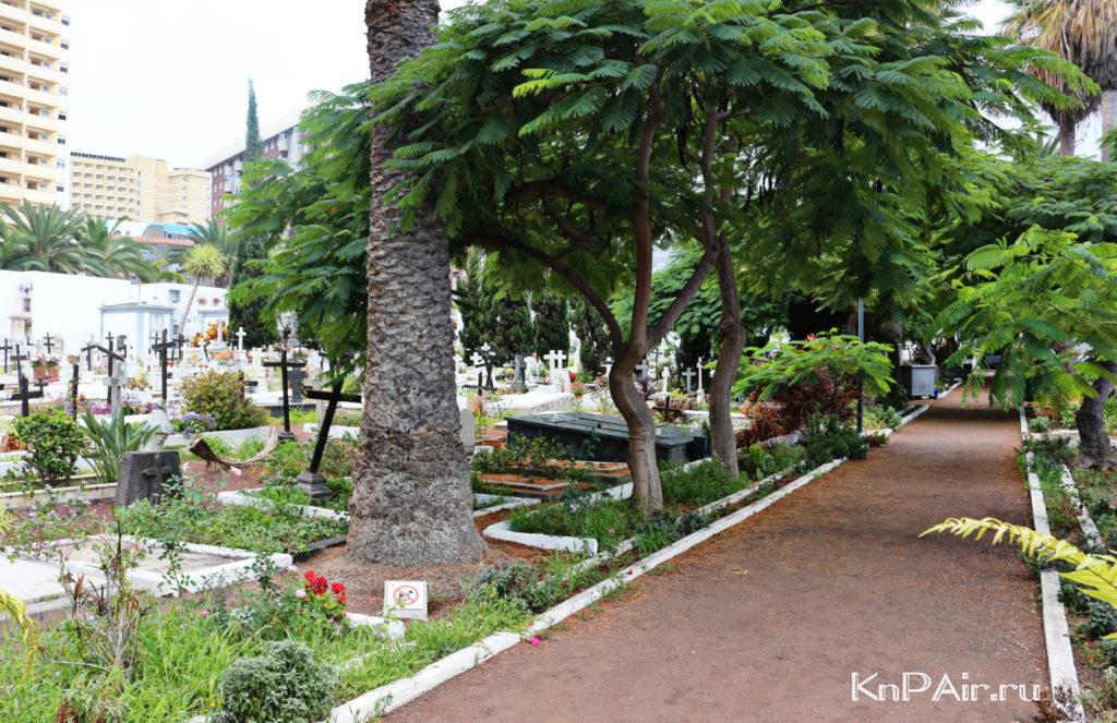 Neobychnye-mesta-na-Tenerife