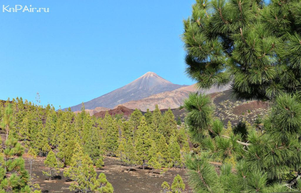 Vid-na-Teide-s-vulcana-Samara