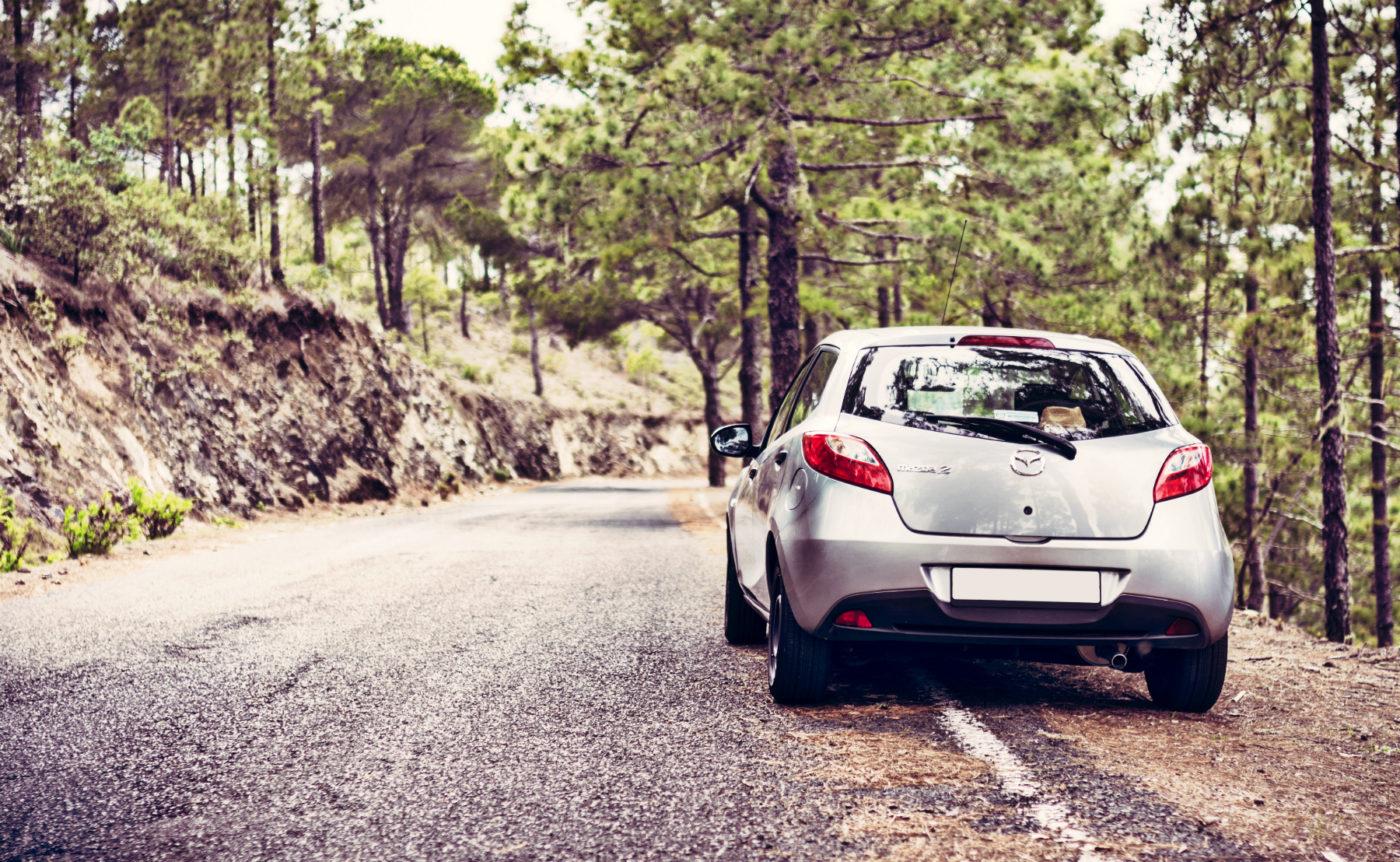 Аренда автомобиля в германии без залога дубликат птс автомобиль в залоге