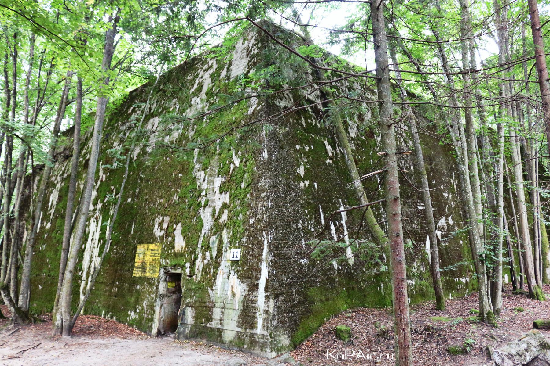 Bunker Martina Bormana