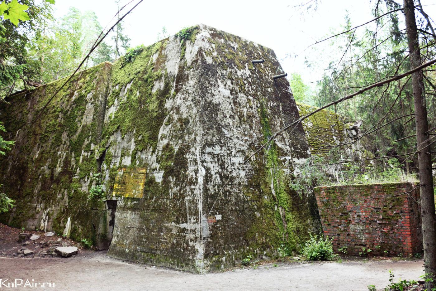 volche-logovo-stavka-hitlera-bunker