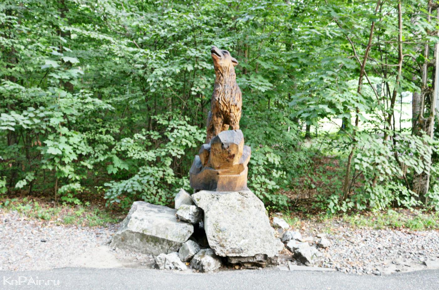Volk-v-lesu-gerlozh