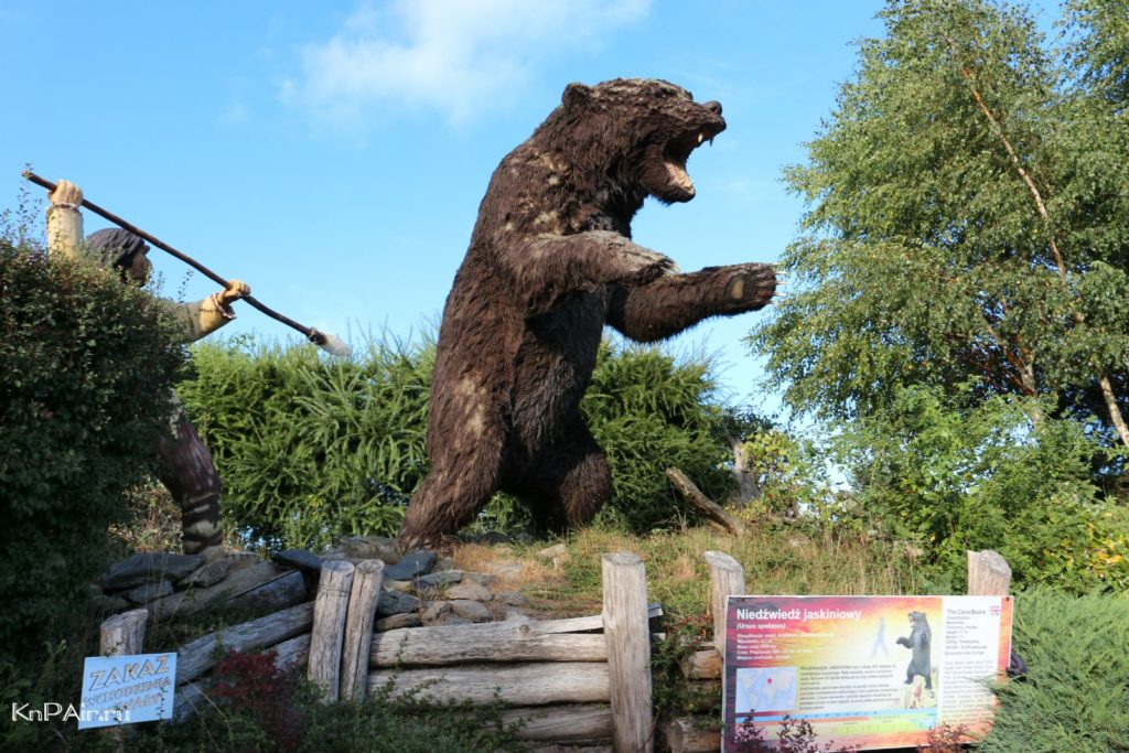 leba-bolshoi-medved