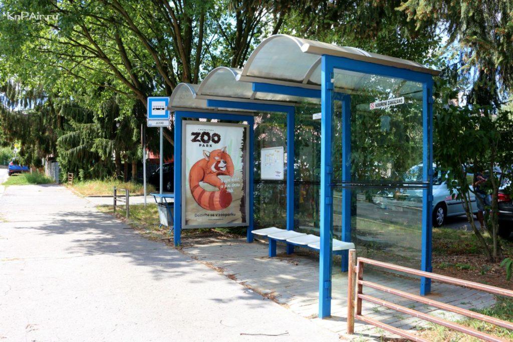 zoopark-v-homutove
