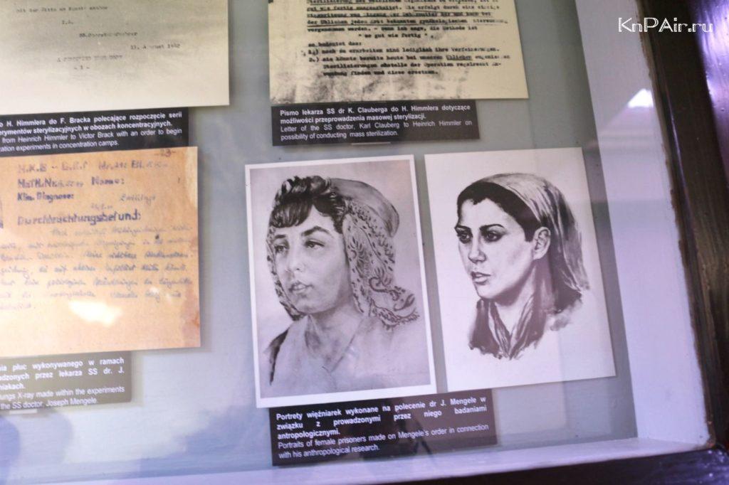 portrety-nacij-doctor-mengele