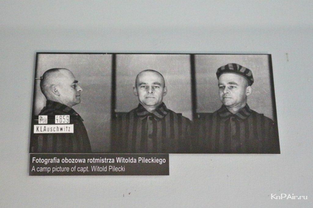 vitold-pileckij-osvencim